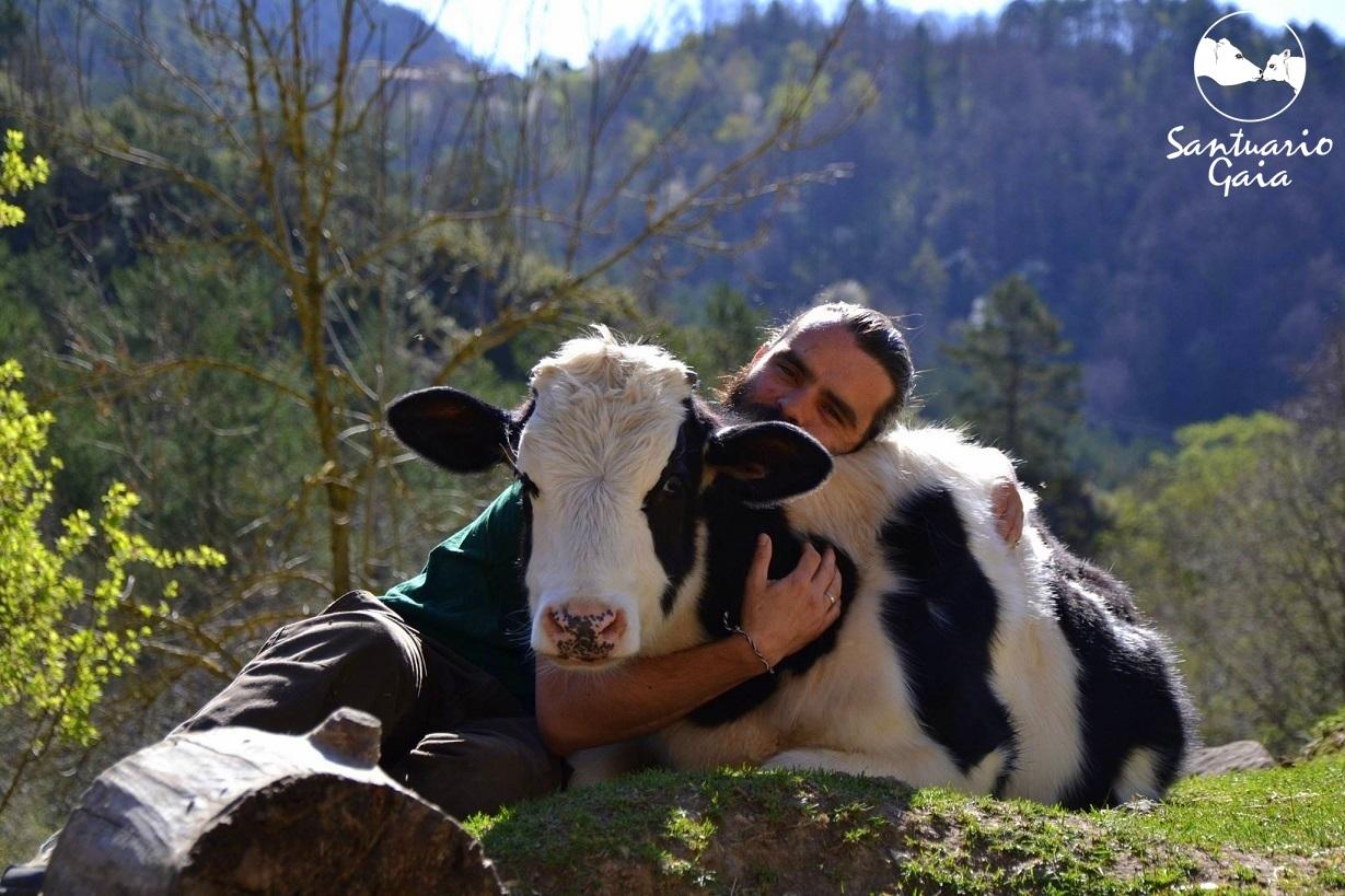 Veganismo. ¿Por qué ser vegano? | Mis recetas veganas fáciles