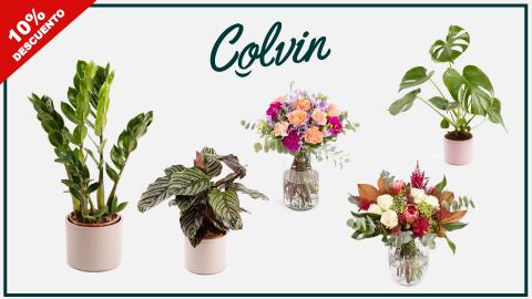 codigo-descuento-flores-plantas-colvin